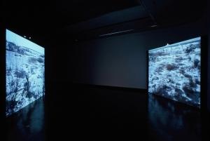 'Vacaresti' installation, Florin Tudor & Mona Vatamanu, Cooper Gallery, DJCAD, Dundee UK